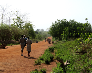 The dirt road leading to Ouesse in the central region of Benin